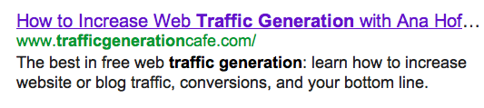 google result for traffic generation cafe