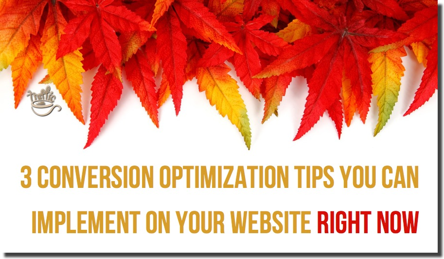 conversion traffic optimization tips