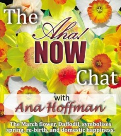 aha!now interview with ana hoffman
